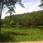 Aubachtalwanderung (10)